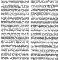 House of Mirth Item.pdf